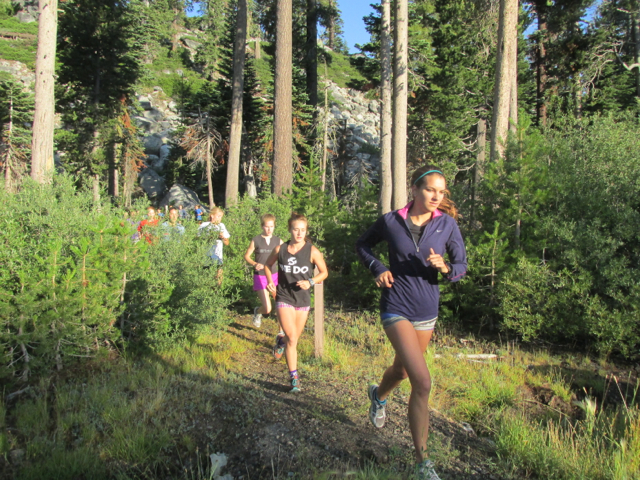 Lake Tahoe Tree Run